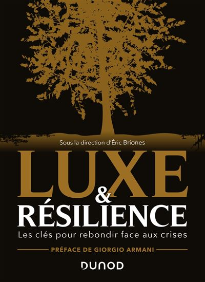 Luxe-et-resilience-Yuan-Zou-Hylink